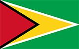 Abbild der Flagge von Guyana